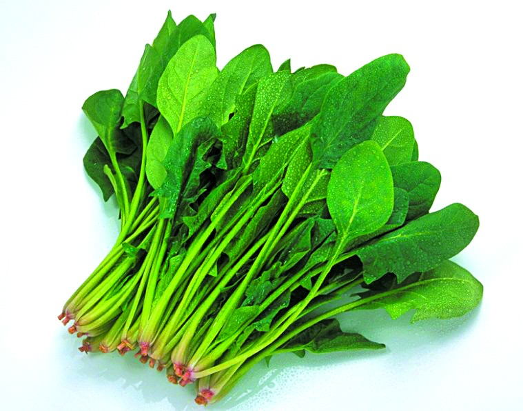 Chinese Food Spinach Healthy Benefits And Nutrition Facts Ab Smart Health Discount